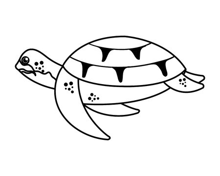 turtle animal nature icon vector illustration design Illustration