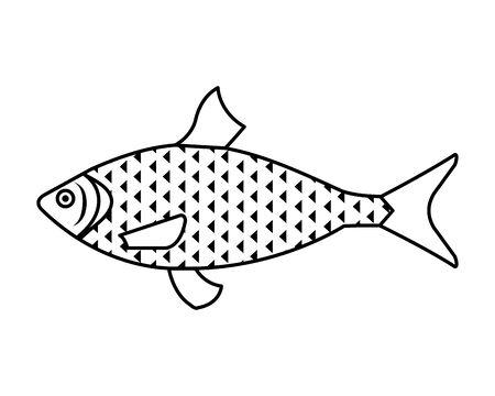 sea fish animal icon vector illustration design 向量圖像