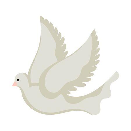 beautiful dove bird flying icon vector illustration design