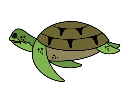 turtle animal nature icon vector illustration design Illusztráció