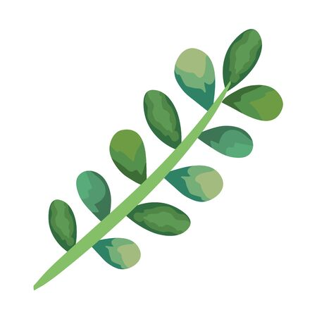 branch with leafs plants icon vector illustration design Ilustração