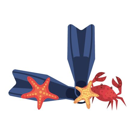 summer swimfins and crab with starfish vector illustration design