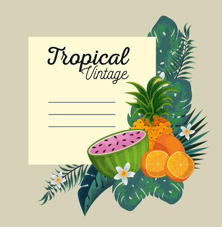 card with tropical fruits and exotic flowers and leaves vector illustration Illustration