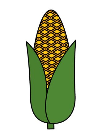 corn cob vegetable icon vector illustration design