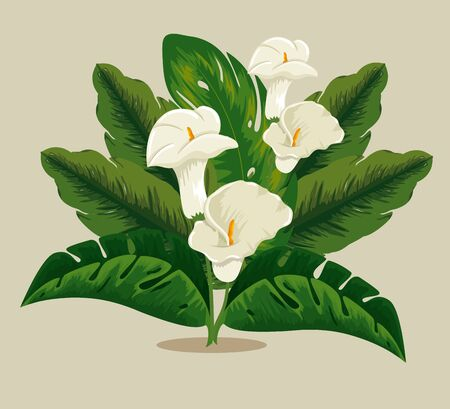 tropical flowers plants with exotic leaves vector illustration
