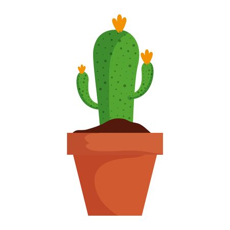 cactu plant in pot icon vector illustration design Illustration