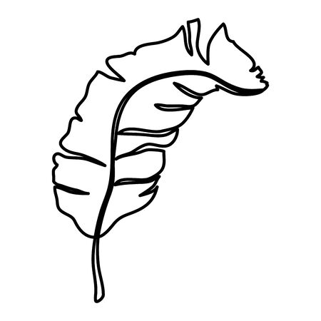 tropical and exotic palm leaf vector illustration design 일러스트