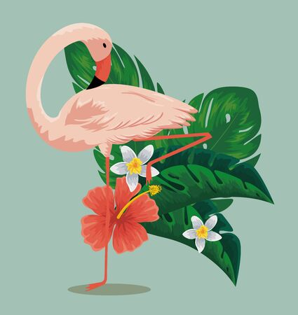 exotic flamish with tropical flowers and leaves vector illustration