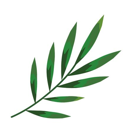 branch with leafs plants icon vector illustration design Illustration