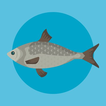 fish sea animal with scales and tail over blue background vector illustration 스톡 콘텐츠 - 128350678
