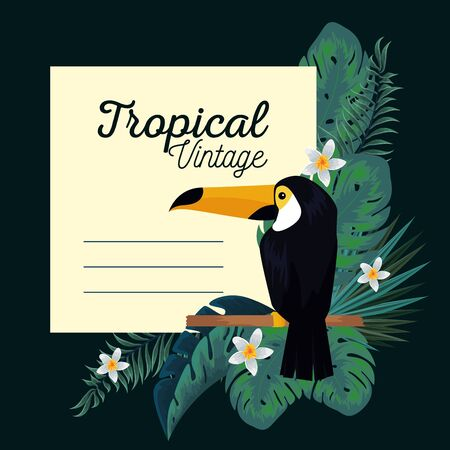 tropical card with toucan and leaves plants vector illustration