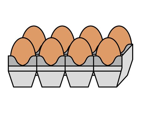 eggs carton packing healthy food vector illustration design