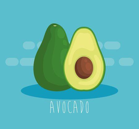 fresh avocado fruit organic nutrition to healthy food vector illustration Ilustração