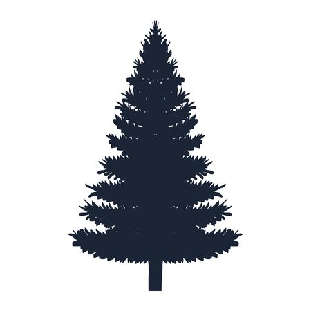 pine coniferus tree isolated icon vector illustration design Иллюстрация