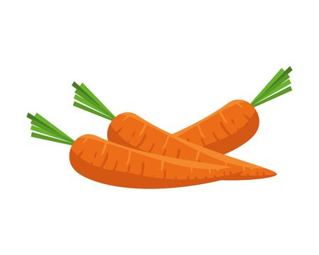 fresh carrots vegetables icon vector illustration design Ilustrace