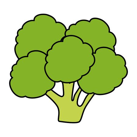 fresh broccoli vegetable icon vector illustration design Foto de archivo - 128983329