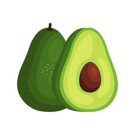 fresh avocado vegetable nature icon vector illustration design