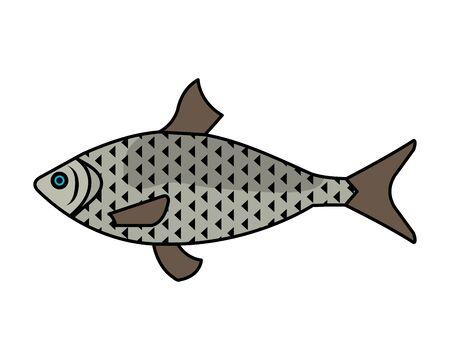 sea fish animal icon vector illustration design Illustration