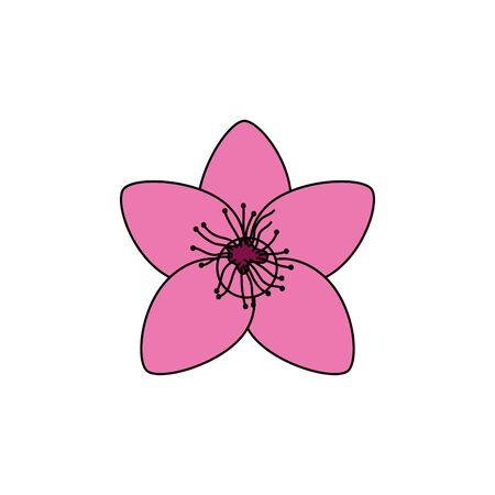 cute decorative flower garden icon vector illustration design