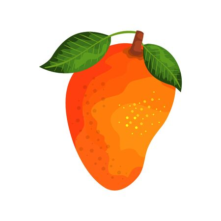 fresh mango fruit nature icon vector illustration design 矢量图像