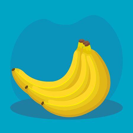 delicious bananas healthy fruit nutrition over blue background, vector illustration