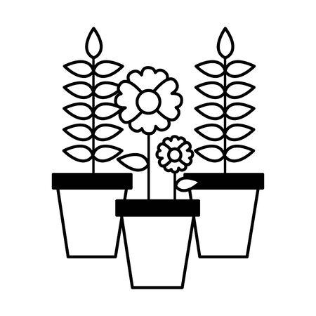 potted flower plants decoration vector illustration design