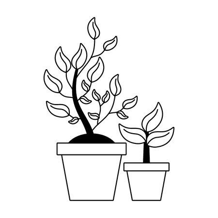 potted plant tree interior decoration vector illustration