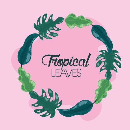 frame decoration pink background tropical leaves vector illustration