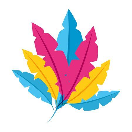 colored feathers decoration ornament vector illustration design