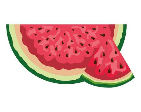 fresh watermelon tropical fruit portion vector illustration design Иллюстрация
