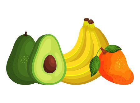 group of fresh fruits and vegetables vector illustration design