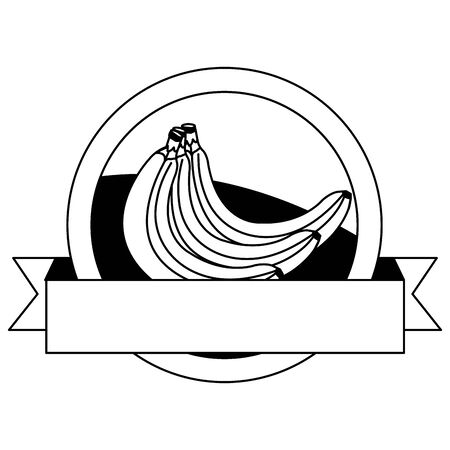 fresh bananas fruits with ribbon seal stamp vector illustration design