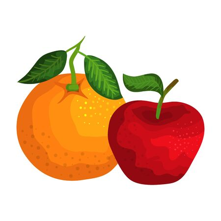fresh orange and apple fruits nature vector illustration design