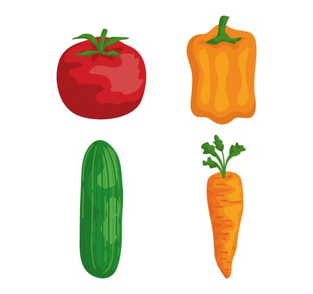 set of tomato with pepper and cucumber with carrot over white background vector illustration