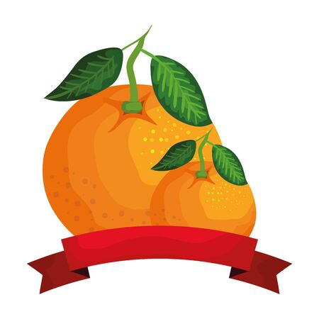 fresh oranges fruits with ribbon seal vector illustration design
