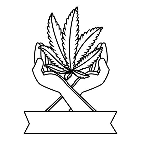 hands protecting cannabis leafs plant vector illustration design