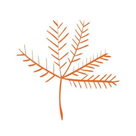 autumn dry branch season decoration vector illustration design