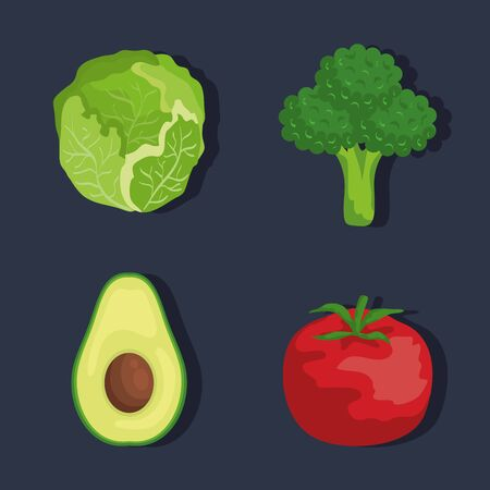 set of lettuce with broccoli and avocado and tomato to healthy food vector illustration