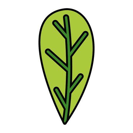 green leaf foliage on white background vector illustration