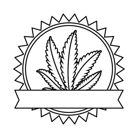 cannabis plant leafs nature frame vector illustration design