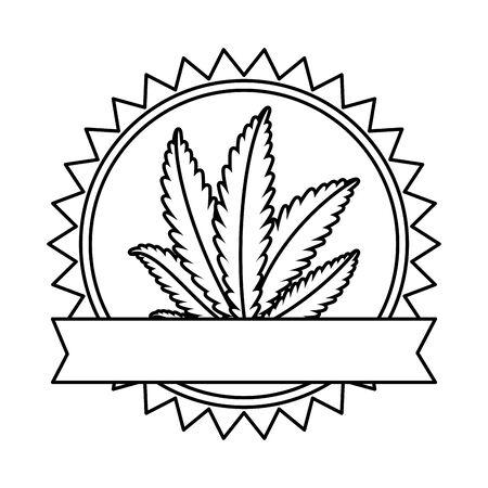 cannabis plant leafs nature frame vector illustration design