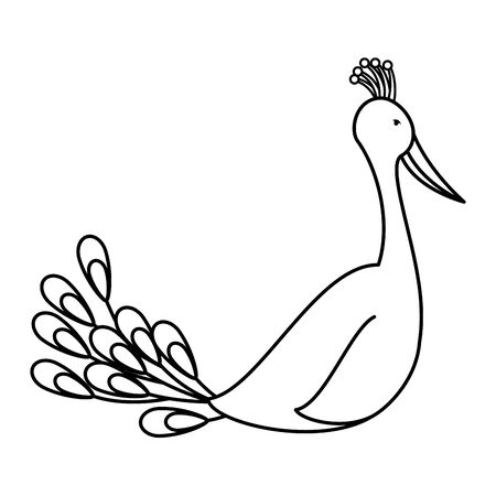 indian peacock bird exotic icon vector illustration design 일러스트