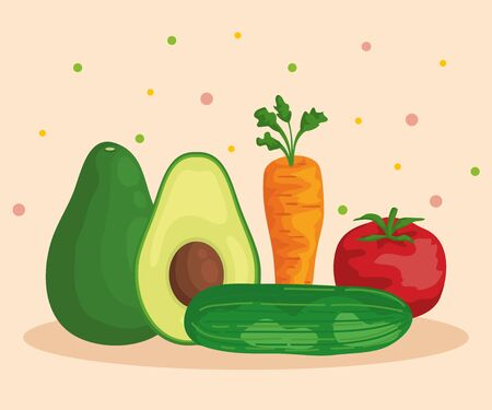 fresh avocado fruit and carrot with tomato and cucumber to healthy food vector illustration Illustration