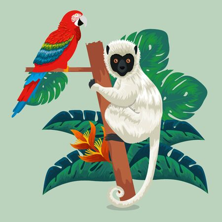 parrot and lemur animals with exotic leaves vector illustration