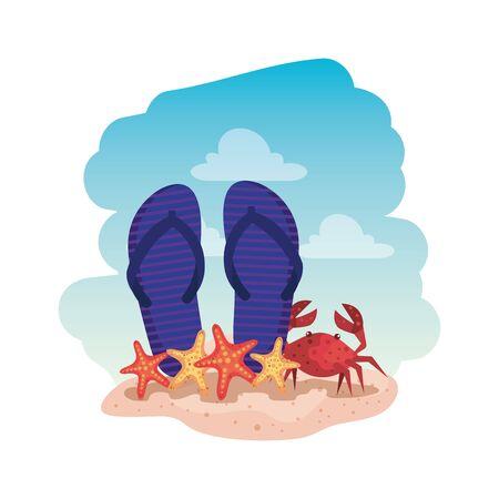 summer flip flops and crab with starfish vector illustration design Illustration