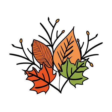 autumn branch and dry maple leafs decoration vector illustration design