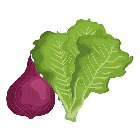 fresh onion and lettuce vegetables nature icons vector illustration design