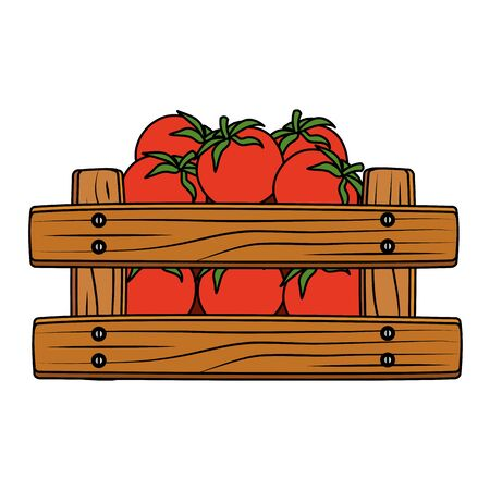 fresh tomatoes vegetable in wooden box vector illustration design
