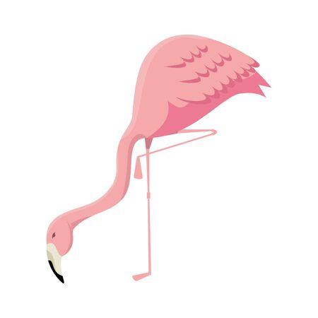 elegant flamingo bird icon vector illustration design