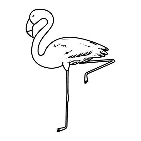 exotic flemish bird icon vector illustration design